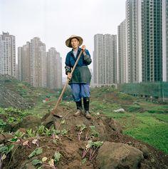 Chongqing Metamorpolis | Artskills