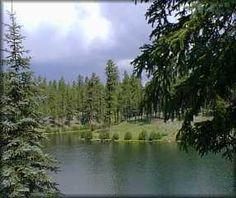 Apache National Forest - Arizona