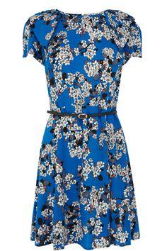 Trailing Blossom Skater Dress