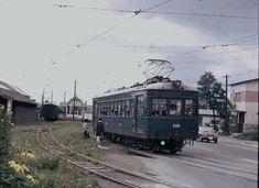 旭山動物園方面に向かう路面電車