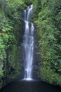 Waterfall on Hana Highway, Maui- it really is that beautiful and we WILL go there again. If I start saving now, I should be able to pull it off for our 10th annivesary