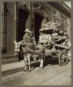 BL Vendedor de frutas en la Caracas de Antaño 1940