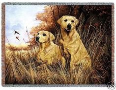 """""""Yellow Labradors Throw"""" This pair of handsome Yellow Labs painted by Robert May sit in wait of pheasants to fly over at the edge of the woods in billowing grass. Cotton blend. Woven on Jacquard looms"""