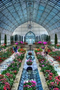 Marjorie McNeely Conservatory | Flickr - Photo Sharing!