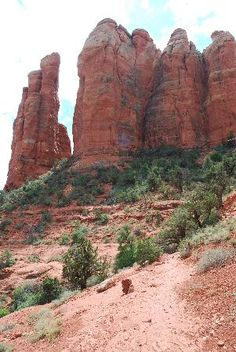 Sedona is South of Williams.  Hike Cathedral Rock.  Can bring dog on leash.