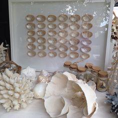 "29 Likes, 2 Comments - Annie Flynn (@oceanicartworks) on Instagram: ""#pearl#shells#sunshinecoast #coral #eumundi #visitnoosa #ocean #white#noosa#"""