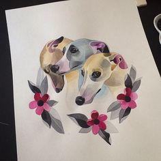 Three Cute Greyhound Dogs .