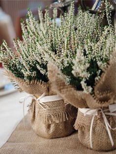 42 Trendy diy wedding favors rustic burlap centerpieces Wedding Table Runner Burlap Centerpieces Ideas For Table Runner Burlap Centerpieces Ideas For 201935 Rustic Wedding Rustic Wedding Decorations You Must Have A Burlap Wedding Decorations, Rustic Wedding Favors, Wedding Table Centerpieces, Wedding Ideas, Wedding Burlap, Decor Wedding, Wedding Gifts, Wedding Cakes, Burlap Centerpieces