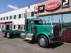 Peterbilt 389, Trucks, Cats, Vehicles, Gatos, Truck, Car, Cat, Kitty