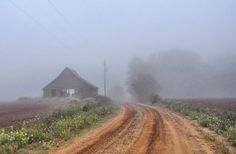 Young's Chapel Road (Ben Hill County, Georgia) [Restored Barn Red Clay Dirt Road, Foggy Spring Morning] by Brian Brown