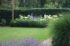 De grote witte bollen van de Hydrangea arborescens 'Annabelle' combineren uitstekend met de purpere kleur van de Perovskia atriplicifolia 'Blue Spire'. De Taxushaag ervoor zorgt voor een stevige structuur en houdt de Hydrangea's letterlijk 'binnen de perken'.
