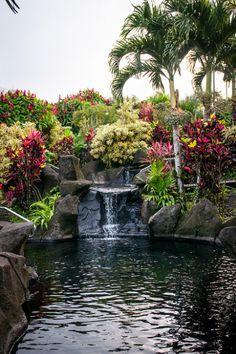 Hot springs at Arenal Kioro