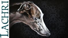 "Time Lapse  Greyhound in oil over acrylic paint , ""Speed Painting"" demon..."