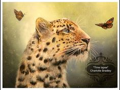"""Leopard speed painting """"Time lapse""""   Charlotte Bradley - YouTube"""