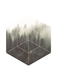 GEOMETRIC DREAM Art Print, forest fog art, forest mist, black & white art photography, contemporary wall art, modern wall art, scandinavian art