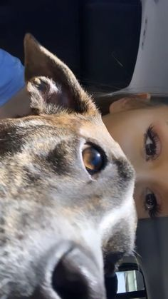 Ari via ig stories 💕 Ariana Grande Photoshoot, Ariana Grande Gif, Ariana Grande Wallpaper, Ariana Grande Pictures, Justin Bieber, Lost Pictures, Cute Puppies, Cute Dogs, Ariana Video
