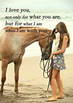 - Art Of Equitation Cute Horses, Pretty Horses, Horse Love, Beautiful Horses, Cowgirl And Horse, Horse Girl, Equestrian Quotes, Equestrian Problems, Inspirational Horse Quotes