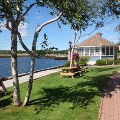 Tourist Bureau Shelburne Nova Scotia, Famous Lighthouses, Plants, Pictures, Beautiful, Photos, Flora, Plant, Drawings