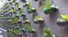 Ghivece de flori in forma de lebada confectionate din sticle de plastic Home Design, Diy Garden, Peta, Plants, Instagram, Budget, Home Decor, Gardens, Handmade Home Decor