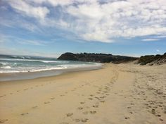 St. Kilda beach, Dunedin St Kilda, New Zealand, Scenery, Beach, Water, Outdoor, Gripe Water, Outdoors, Landscape