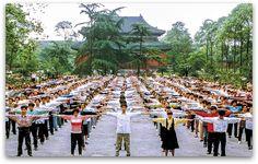 #Free2Meditate: Freedom for Falun Dafa