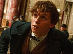 Which Fantastic Beast Are You, Really?