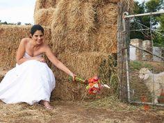 Noorspoort Guest Farm - Steytlerville, Eastern Cape