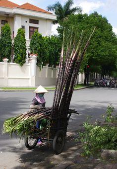 All sizes | Saigon: Sugar Cane Seller | Flickr - Photo Sharing!