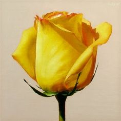 Yellow Rose,  painting by Oriana Kacicek