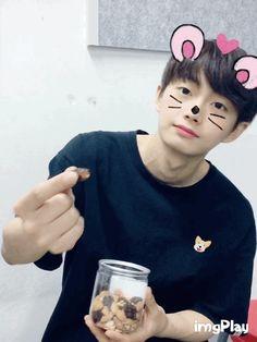 김용국 (Kim Yongguk) Kim Yongguk, Kwon Hyunbin, Produce 101, Ulzzang Boy, You Are My Sunshine, Joyful, Bigbang, Korea, Kpop