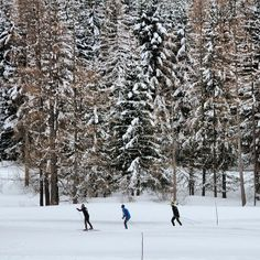 #lesarcs #igerssavoie #igersfrance #igersworld #montain #montagne #snow #neige - @Nadia Marie- #webstagram