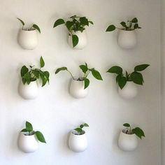 ceramic wall planters for the bathroom