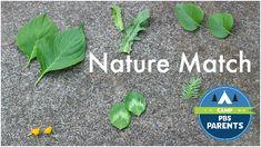 nature match summer camp ideas