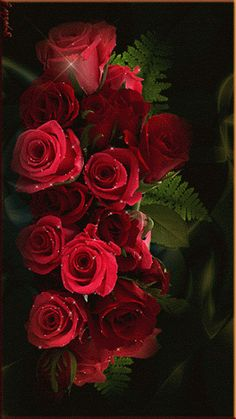 Sending loves and roses to my wonderful Grandmother on Mother's Day.