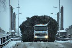 Christmas is coming. Estonia