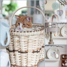 Herzenswärme Laundry Basket, Wicker Baskets, Cats, Home Decor, Gatos, Decoration Home, Room Decor, Cat, Kitty