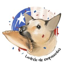 Perro orejón