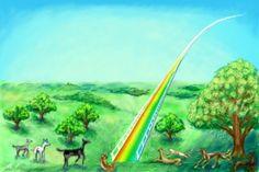 The Rainbow Bridge for Rescuers