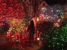 Christmas Lights Bay Area Merry & Bright The Best Holiday Light Displays In The Bay  Merry
