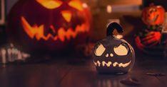 📖 Περιεχόμενο: 🕸 Πώς να παίξετε το παιχνίδι Halloween Charades 🧟 Παίξτε Charades online 💀 Απόκριες ιδέες Charades 🦇 Απόκριες ιδέες Charades για ενήλικες 👻 Απόκριες ιδέες Charades για παιδιά Το Halloween είναι η εποχή του χρόνου, όταν είναι πραγματικά αποδεκτό να τρομάζουμε όλους και να δείχνουμε σε όλους τις τρομακτικές πλευρές μας. Μπορείτε να μαζέψετε με την οικογένεια και τους φίλους σας για μια εκπληκτική και διασκεδαστική έκδοση αποκριών του Charade Drinking Games For Parties, Halloween Drinking Games, Halloween Party Games, Halloween Drinks, Halloween Celebration, Halloween Table, What Day Is Halloween, Halloween Film, Jack Skellington Dog