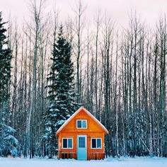 Snowy cabin on the edge of a forrest #winter #chill