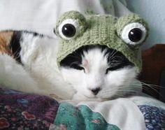 buffo cappellino all'uncinetto per gatti o piccoli cani