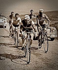 Tour de France de 1956, Charly Gaul, Gilbert Bauvin et Federico Martín