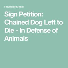 Sign Petition: Chained Dog Left to Die - In Defense of Animals