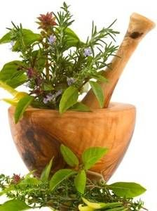 Treating a Staph Infection with Herbs | the Urban Herb School