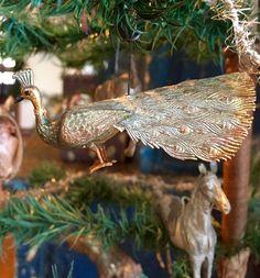 Dresden peacock