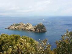 Saint Tropez, Port Cros, Port Grimaud, Saint Maximin, Parc National, South Of France, Outdoor, Toulon, Outdoors