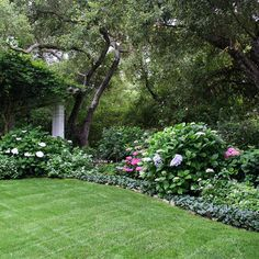 Back Yard Shade Garden - traditional - landscape - santa barbara - Donna Lynn - Landscape Designer
