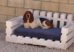 Outside dog bed.