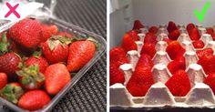 11 trikov, ako v reštauráciách udržia ovocie a zeleninu čerstvú po dlhú dobu. TOTO používam aj doma | Báječné Ženy
